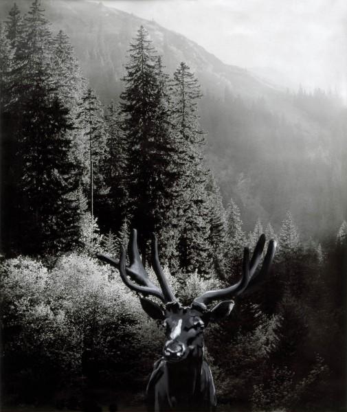 Hirsch 126-6-1, oil on silver gelatine print, 102 x 68 cm, 1999