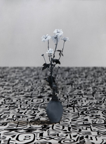 Blume 248-3, oil on silver gelatine print, 73 x 55 cm, 1997