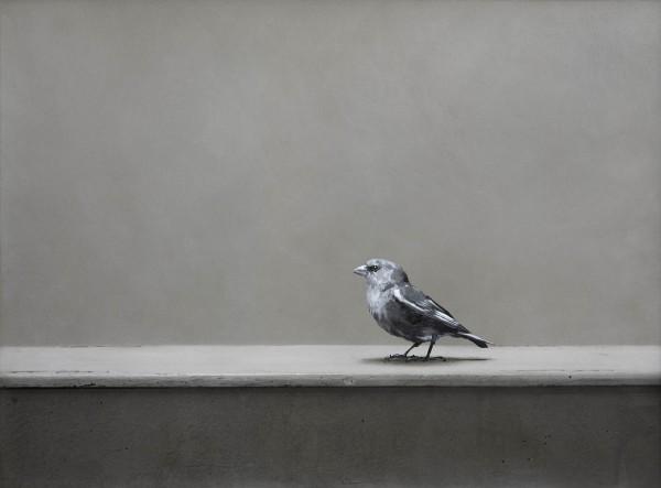 Vogel 273-6-27, oil on silver gelatine print, 30 x 40 cm, 2005